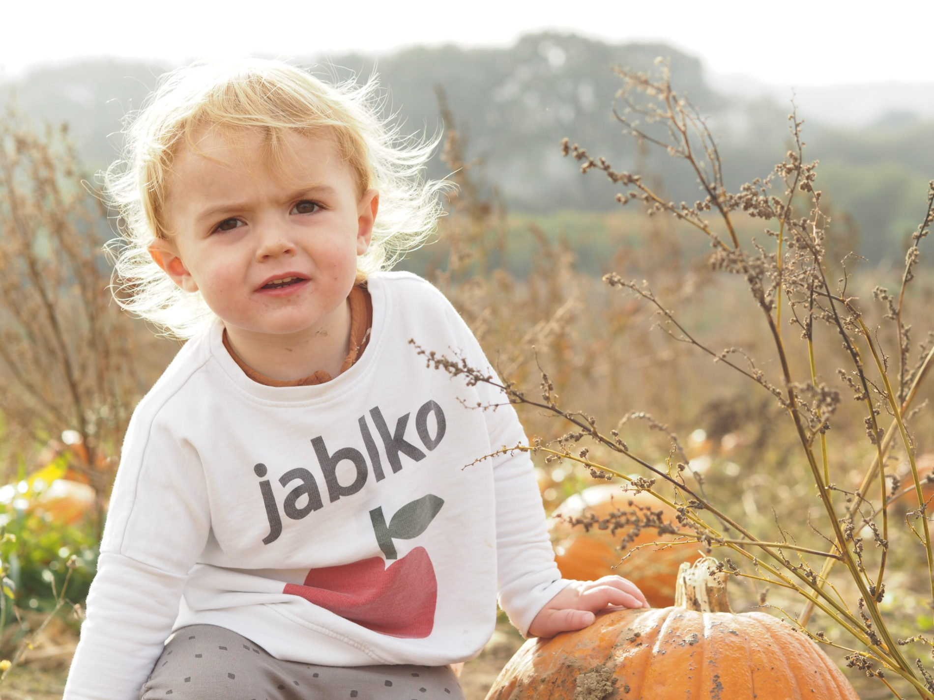 jablko sweatshirt Hugo Loves Tiki